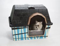 Dog house with new bedding in Conroe, Texas