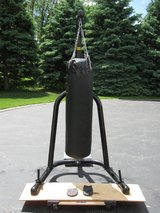 Punching Bag/Stand/Gloves in Plainfield, Illinois