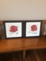 2 Framed Wall Art Pictures in Bartlett, Illinois