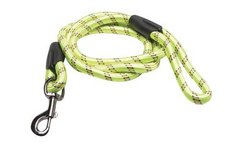 Green 6' Dog Leash in St. Charles, Illinois
