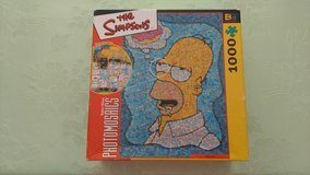 Homer Simpson puzzle in Byron, Georgia
