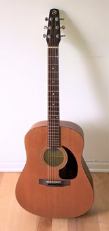 Seagull Coastline S6 Acoustic Guitar Natural + Case & New Strings in Glendale Heights, Illinois