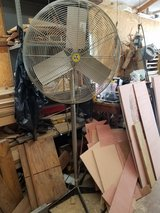 1/3 HP Pedestal Fan in Fort Leonard Wood, Missouri