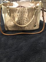 Brahmin Ruby Melbourne Satchel color champagne in Fort Knox, Kentucky