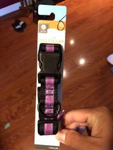 Large dog collar in Naperville, Illinois