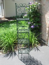 Scrolly Wrought Iron Plant Stand/Shelving in Plainfield, Illinois
