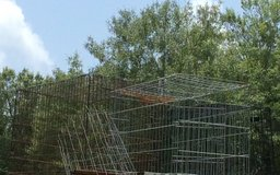 Dog Crate / Kennel in Kingwood, Texas