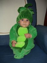 Halloween costume infant Sweet pea in Naperville, Illinois