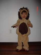 Halloween costume Lion in Naperville, Illinois