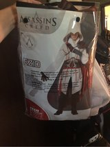 Halloween costume Assassin's Creed Ezio in Naperville, Illinois