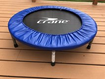 Rebounder Trampoline in Chicago, Illinois
