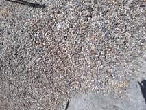 Pea-Gravel Used (un-washed) in Spring, Texas