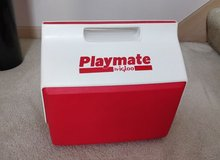 Playmate igloo cooler storage ~ picnic groceries camping fishing sporting events soccer baseball... in Bartlett, Illinois