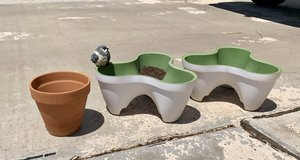 Planters in Alamogordo, New Mexico