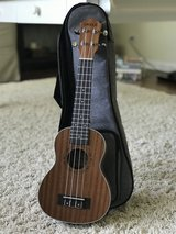 Ukulele + Case in Bolingbrook, Illinois