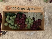 10 lighted grape lights in Chicago, Illinois