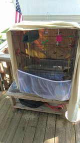male Finch and cage in Fort Knox, Kentucky