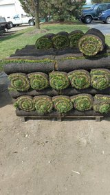sod, detaching,  aereation, in St. Charles, Illinois