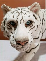 Stone resin white tiger in Conroe, Texas