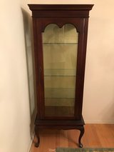 Display Cabinet in Glendale Heights, Illinois
