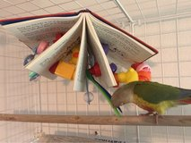 bird toys made here in Eglin AFB, Florida