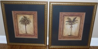 Set of 2 Palm Tree Pictures ~ Matted / Framed Art in Joliet, Illinois