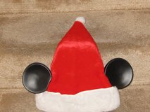 Disney World Santa Hat in Joliet, Illinois