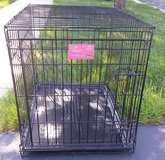 LIfe stages dog cage in Chicago, Illinois