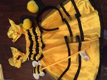 Bee costume 2T in Chicago, Illinois