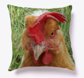 Chicken Pillow. NEW in Ramstein, Germany
