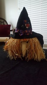 Halloween Witch in Chicago, Illinois
