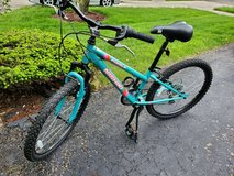 Nishiki Youth Pueblo 24'' Mountain Bike in Westmont, Illinois