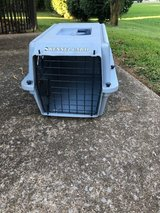 Pets For Sale In Clarksville, TN | Clarksville Bookoo