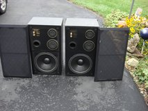 ACOUSTIC LAB PRO SERIES 600 SPEAKER CABINETS in Bartlett, Illinois