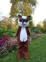 Fox costume size 6/7 in Stuttgart, GE