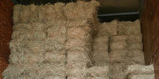 Looking to buy squares bales of horse hay, also looking for someone to cut and bale (square bale... in Fort Leonard Wood, Missouri