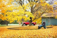 Fall Clean-Up - Prepare your yard for the upcoming Winter in Ramstein, Germany
