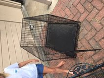 Crate and Pet Bed in Kingwood, Texas