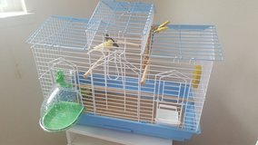 2 Canary Birds with Cage in Fort Lewis, Washington