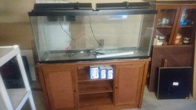 Fish tank with a stand in Stuttgart, GE