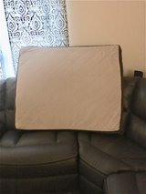 Large dog bed in Chicago, Illinois