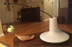 Spinning Wand Cat Toy in Naperville, Illinois