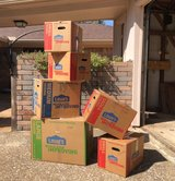 Lowe's Moving Boxes in Kingwood, Texas