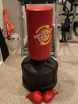 Freestanding punching bag and kickbox in Naperville, Illinois