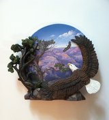 Coming Home Eagle 3D Collector Plate in Chicago, Illinois
