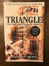Triangle The Fire That Changed America in Aurora, Illinois