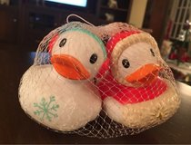 Holiday Ducks in Bolingbrook, Illinois