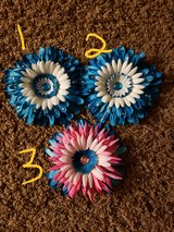 Big Flower clips in Plainfield, Illinois