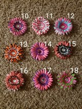 Flower Clips #2 in Plainfield, Illinois