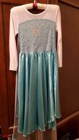 Elsa Frozen dress with sheer sparkle attached cape in Aurora, Illinois